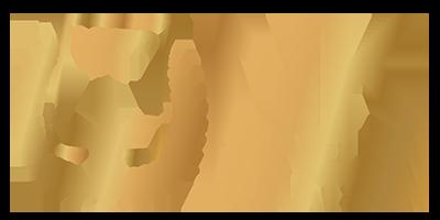 NK Panelen Plaatsen Logo